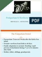 Postpartum Physical Assessment by Ms. Mevelle L. Asuncion RN