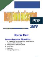 Ecosystem L2