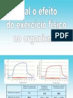 Efeito_exercicio_fisico_introducao_respiração_celular