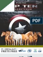 PDF Para Mba