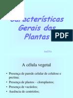Características Gerais das Plantas