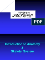 FoundationBlock_Anatomy_1Terms&Skeleton