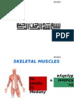 FoundationBlock_Anatomy_2SkeletalMuscles