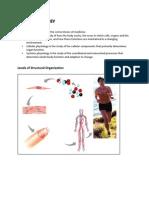 FoundationBlock_Physiology_1BodyFluid&CellMembrane