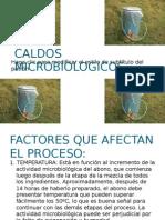 CALDOS MICROBIOLOGICOS