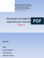 Separação dos pigmentos do espinafre por cromatografia