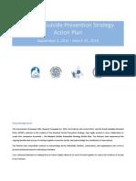 NSPS Action Plan Final English