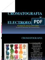 Bioquimica Expo Sic Ion Electroforesis y Cromatografia