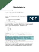 Calculo Vetorial I