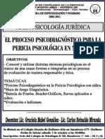 El Proceso Psicodiagnostico para la Pericia Psicologica en Niños/as