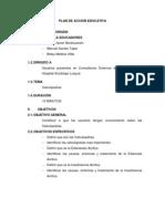Plan de Accion Educativa Valvulopatias