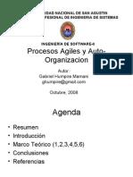 procesosAgilesAutoorganizacion
