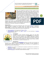 Estrategias Bloque i Planeacion Bio2 2011b Final