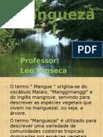 MANGUEZAL