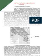 Generalidades sobre La Reserva Indígena Güaymí1