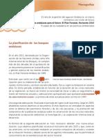 Monografía Plan Forestal res esp