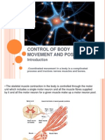 Control of Body Movement and Posture