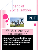 Agent of Socialization Course Work