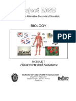 Biology M7 Plant Parts & Functions
