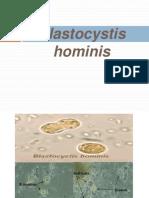 Blastocystis hominis (2)
