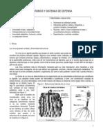 4º - Guía de estudio Microbios y Sistemas de Defensa