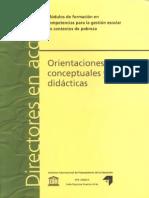 ORIENTACIONES DIDACTICAS BRASLAVSKY