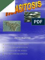 parasitosis3