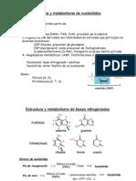 Tema 15 Metabolismo nucleotidos