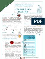 Guia Vitamina b3 Angie