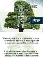 Bioremediation and synthetic biology