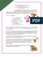 VITAMINA M YOHANA PAZ 11-2