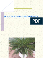 Planta monoica unisexual people