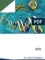 acidos nucleicos Rna (2)