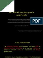 Conservacion Modelos