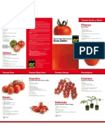 Recomendaciones Tomates - Enza Zaden