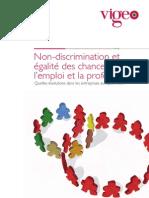 Non-discrimination et égalité des chances dans l'emploi et la profession - Enquête Vigeo