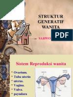 Sek Dan Reproduksi Perempuan