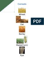 Categories Cereal Herbs