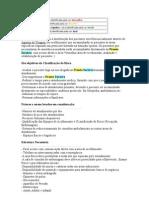 Classificaçao de Risco ,roteiros