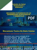 Tema 6. Mecanismos Patogénicos de las Enf. Ocupacionales y Ambientales - Dra. Liliana Rojas de Sanabria (2)