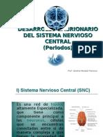 Desarrollo_SNC_periodos