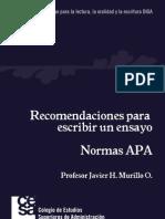 Recomendaciones Para Escribir Un Ensayo Normas APA