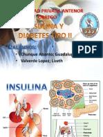 Insulina Expo