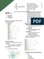 Macrolides Ketolides Chloram Oxazolinodines streptogamis