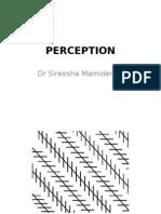 Perception 2011
