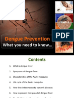 Dengue Prevention & Information, September 15, 2011