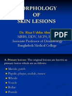Morphology of Skin Lesions
