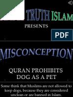26. Quran Prohibits Dog as a Pet