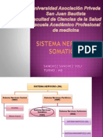 SISTEMA NERVIOSO SOMATICO (2)
