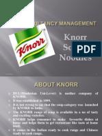 KNOOR Soupy Noodles-prince Dudhatra